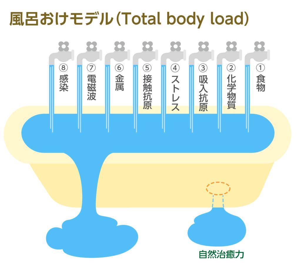 風呂おけモデル(Total body load)